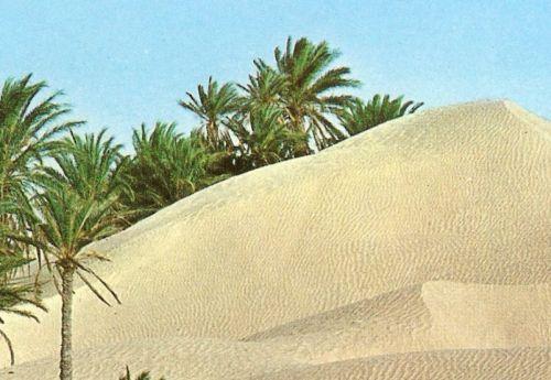 tunisko-poust